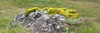 A moss covered boulder on the Isle of Skye (Scotland)